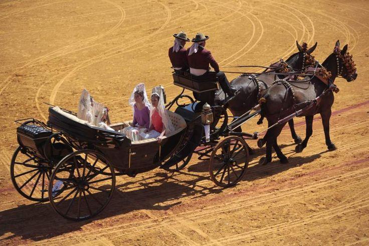 Exhibición de enganches este domingo en Sevilla. Maestranza de Sevilla. #caballos #horses
