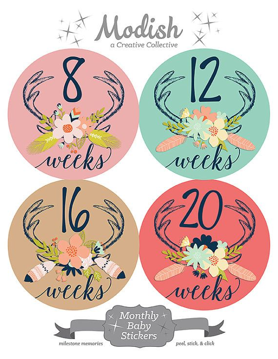 FREE GIFT Pregnancy Stickers Weekly Pregnancy Stickers by ModishCC