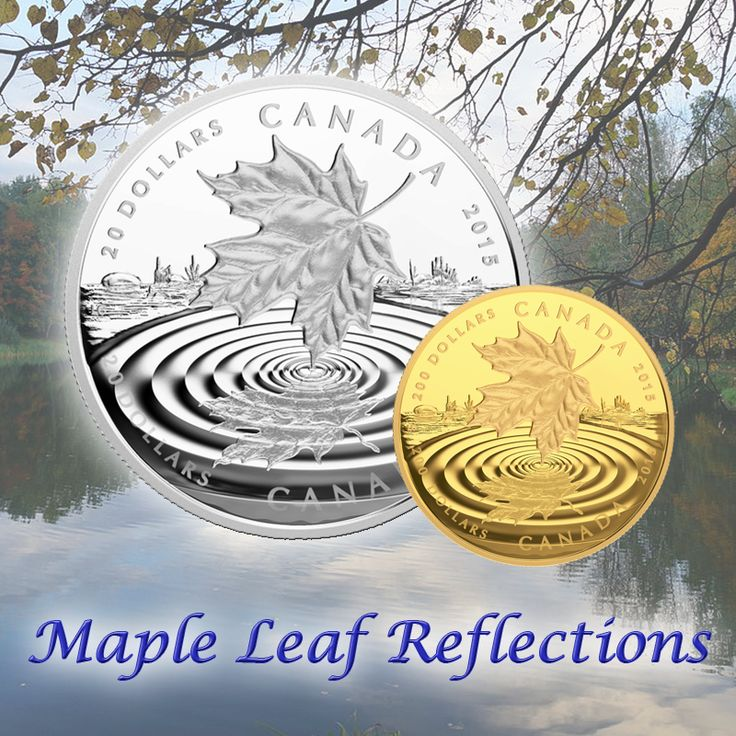 Check out one of our newer coins, Maple Leaf Reflection