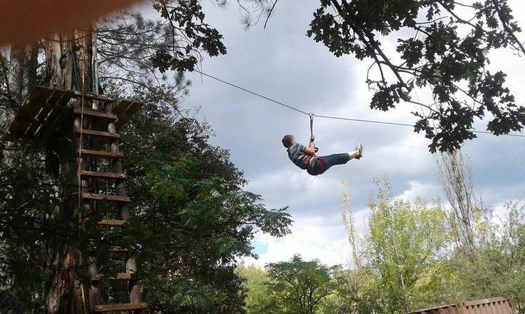 Zipline and Treetop activities