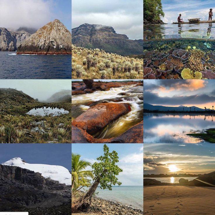 Parques Nacionales (@ParquesColombia) | Twitter