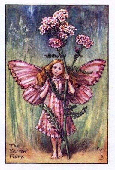 Yarrow Flower Fairy » Flower Fairy Prints- Vintage Fairy Prints by Cicely Mary Barker for sale