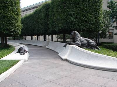 """mother lion watching her cubs at the law enforcement officers memorial in washington, dc...."""".It's not how they died that made them Heroes...It's how they lived their lives"""""""