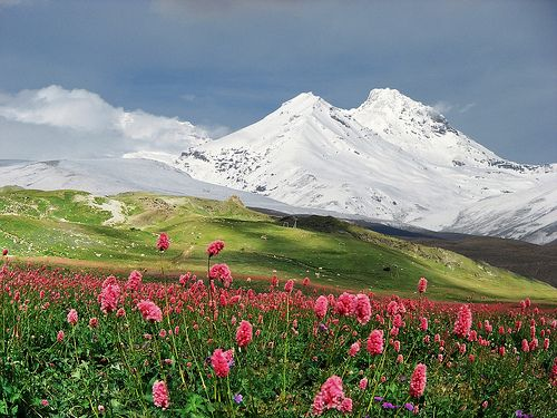 Beautiful changing terrain of the russian steppes more