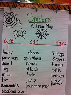 spiders map