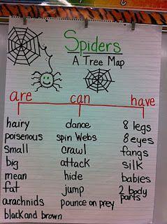 Spider tree map