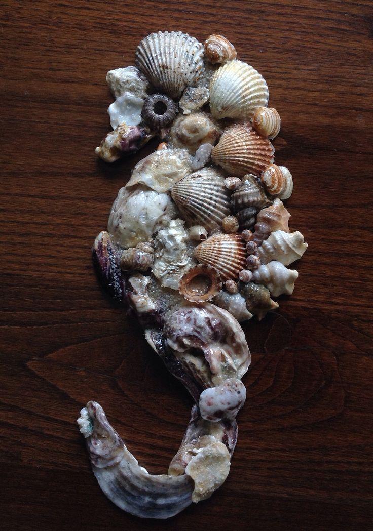 Cavalluccio con conchiglie di mare