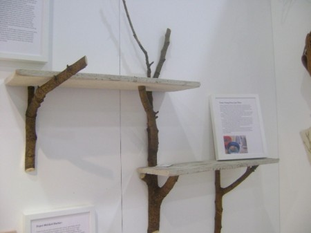 Wood branch shelves...you could paint these white and the shelf the color of the wall...if thats the look your going for