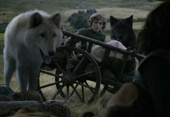 Summer, Shaggydog and Rickon Stark. And the back of Bran's head.  :)