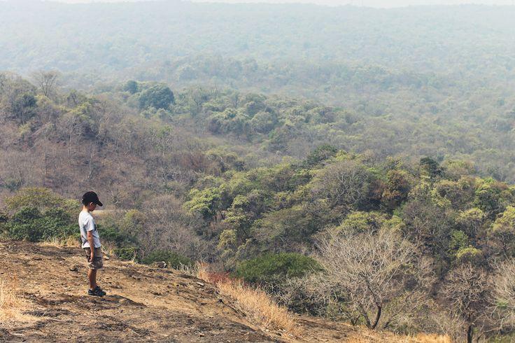 Sanjay Gandhi National Park Mumbai India  CHUZAI ☆ LIVING -