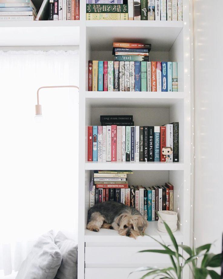 my bookshelf with my dog  #books #bookshelf #dog