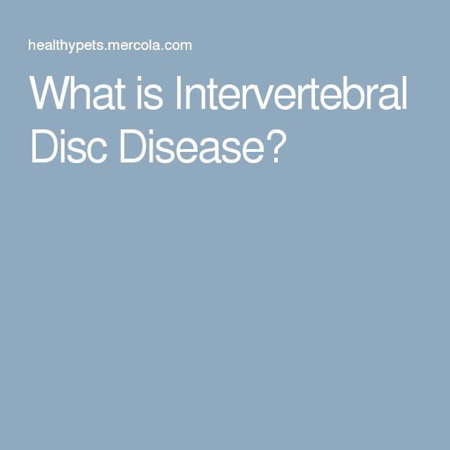What is Intervertebral Disc Disease?