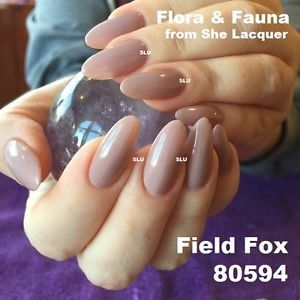 Bluesky-GEL-80594-FIELD-FOX-FLORA-FAUNA-COLLECTION-NEW-UV-LED-FREE-1st-CL-POST