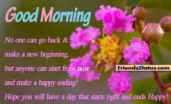 No one can go back & make a new beginning, but anyone can start from now and make a happy ending! Hope you will have a day that starts right and ends Happy! Good Morning