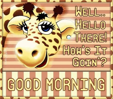 Well Hello there! How's it going? Good Morning!