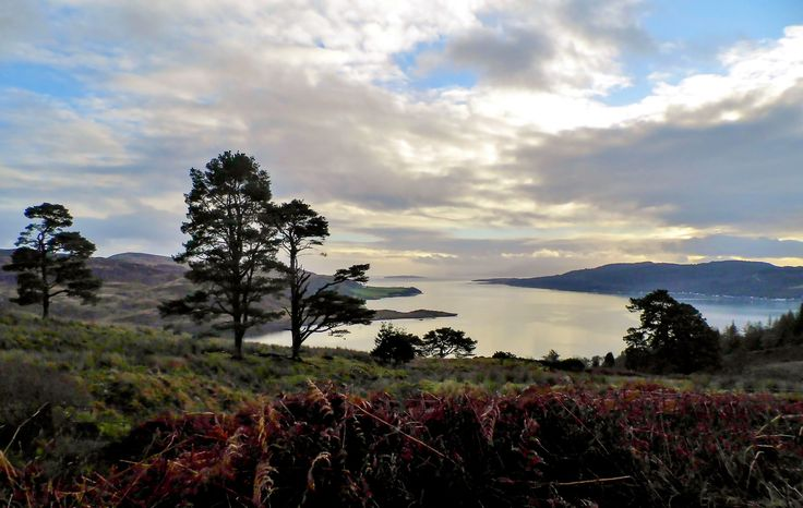 Looking down on to the Kyle of Bute whilst in Scotland travelling to Portavadie.