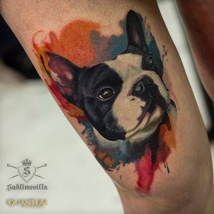 "293 Likes, 7 Comments - Bruno Perdiz (@brunoperdiz_tattooartist) on Instagram: ""French bulldog tattoo I did in the last day at the Oporto tattoo expo 2016. #tattoo #tattoos…"""