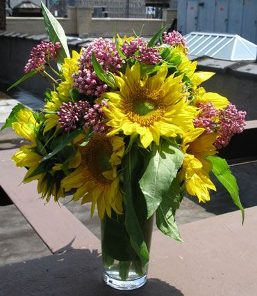 NYC Hospital flower deliveries should be bright and cheerful - two things that sunflowers have in spades!