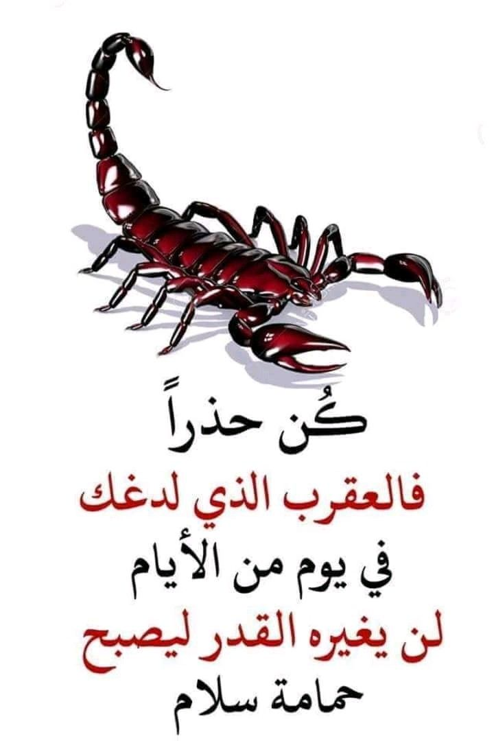 Pin By بابا ماما On Muslim Quotes Good Morning Arabic