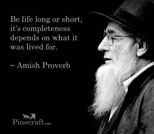 Be life long or short, it's completeness depends on what it was lived for.  ~ Amish Proverb