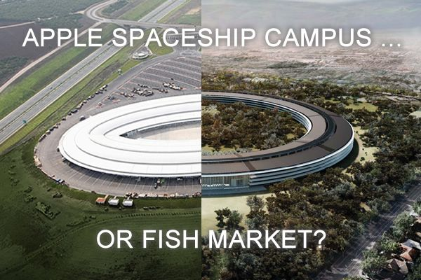 Apple Spaceship Campus or Fish Market? - Homes and Hues