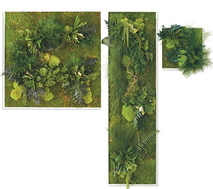moss wall garden - Google Search