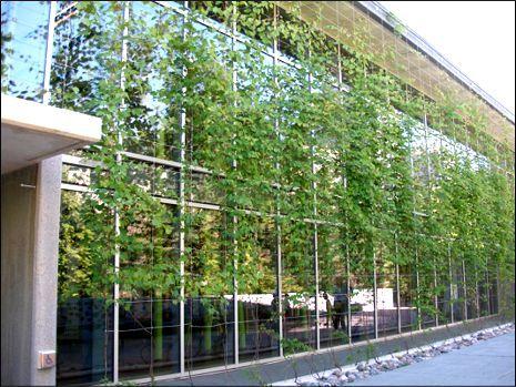 Green Facade System Decorcable Facadescape Carlstahl