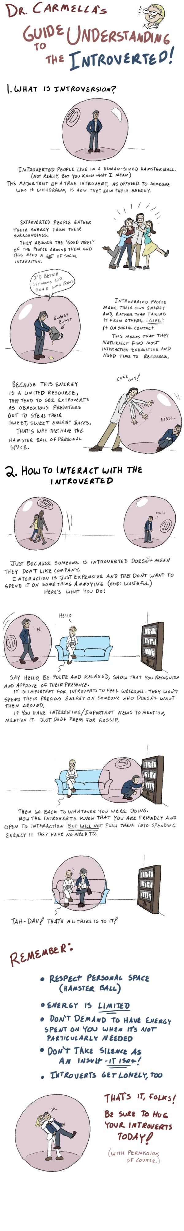 Guide to understanding the introverted…so funny! Hamster ball! Hahahaha!