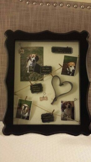 """In loving memory of Roxie (Shadow box with keepsakes). Box and accessories purchased at Aaron Bros. Box holds leash, pet tags, photos, and custom written tags, """"Our little beagle girl"""", """"Always so sweet, loving, and playful"""", and """"a.k.a. Roxiegirl and Schnuppy-Scnups"""".   This box was made with love and joy. I'm grateful to the Lord for the gift of unconditional love Roxie gave to our family. She will always be remembered and loved."""