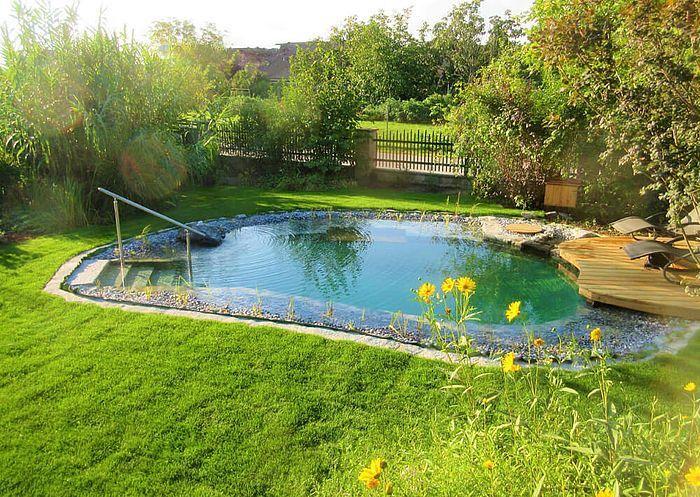 Schwimmteich In Der Abendsonne Swimming Pools Backyard Natural Swimming Pools Natural Pool