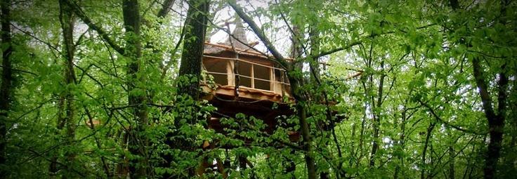 cabanes dans les arbres les cabanes du bois clair cabanes dans. Black Bedroom Furniture Sets. Home Design Ideas