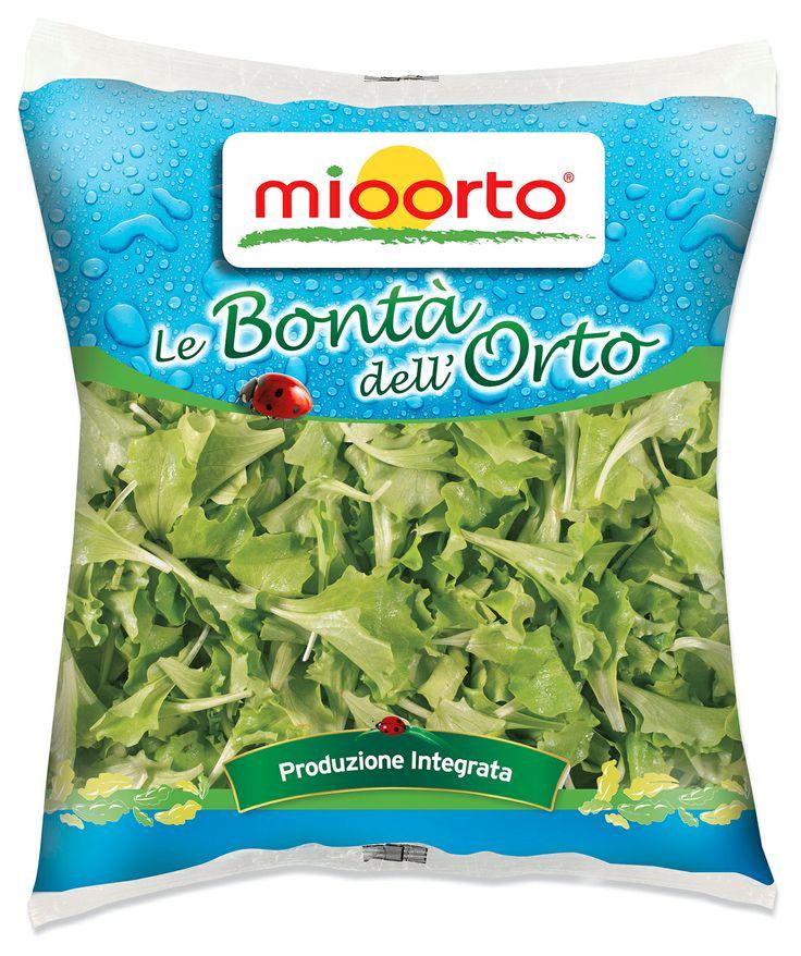 MIOORTO - packaging lattughino
