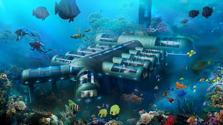 """Fox News reports that Tony Webb, travel advocate and managing director of Planet Ocean Underwater Hotel has just received a U.S. patent to design, """"Planet Ocean Underwater Hotel."""" This innovative design hints that underwater tourism may be the next big thing in luxury travel. #Luxury #Travel #Innovation #Design"""