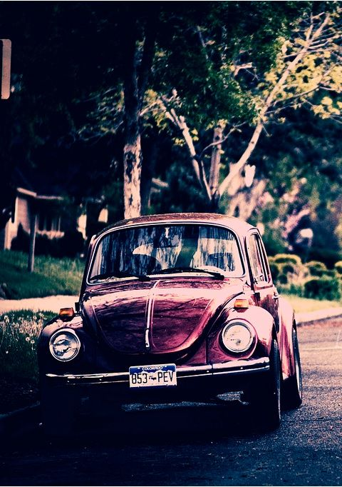 VW Beetle looks like my first vw car