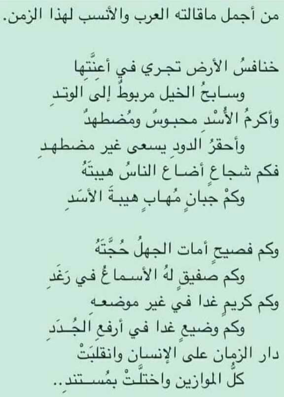 Pin By Amira El Banna On شعر Spirit Quotes Words Quotes Wise Quotes