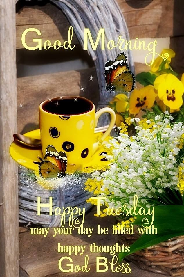 Happy Tuesday May Your Day Be Filled With Happy Thoughts God Bless Tuesday Happy Tuesday Tuesd Tuesday Quotes Good Morning Good Morning Tuesday Happy Tuesday