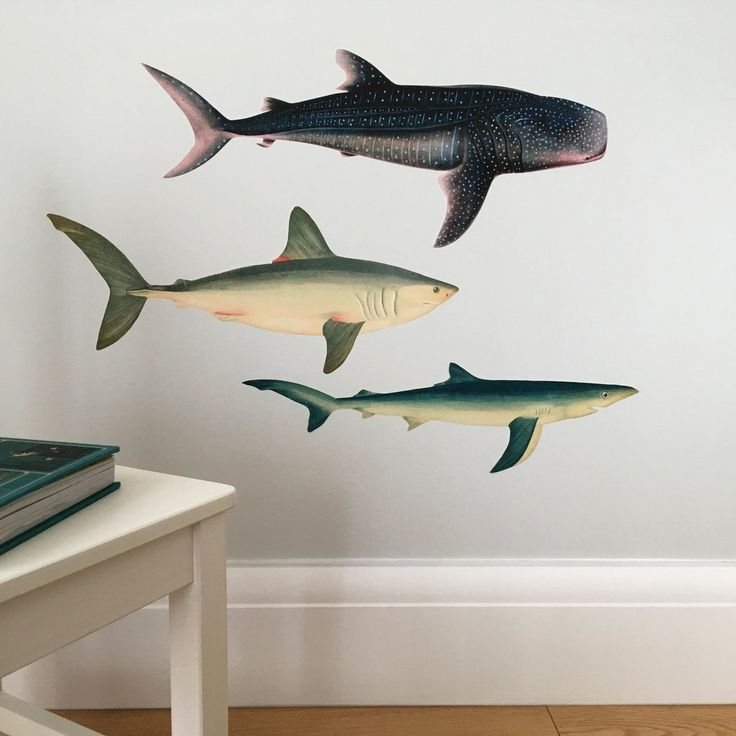 sharks wall sticker/ decal set for kid's bedroom