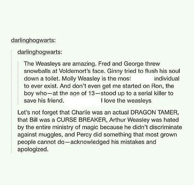 I love the Weasleys