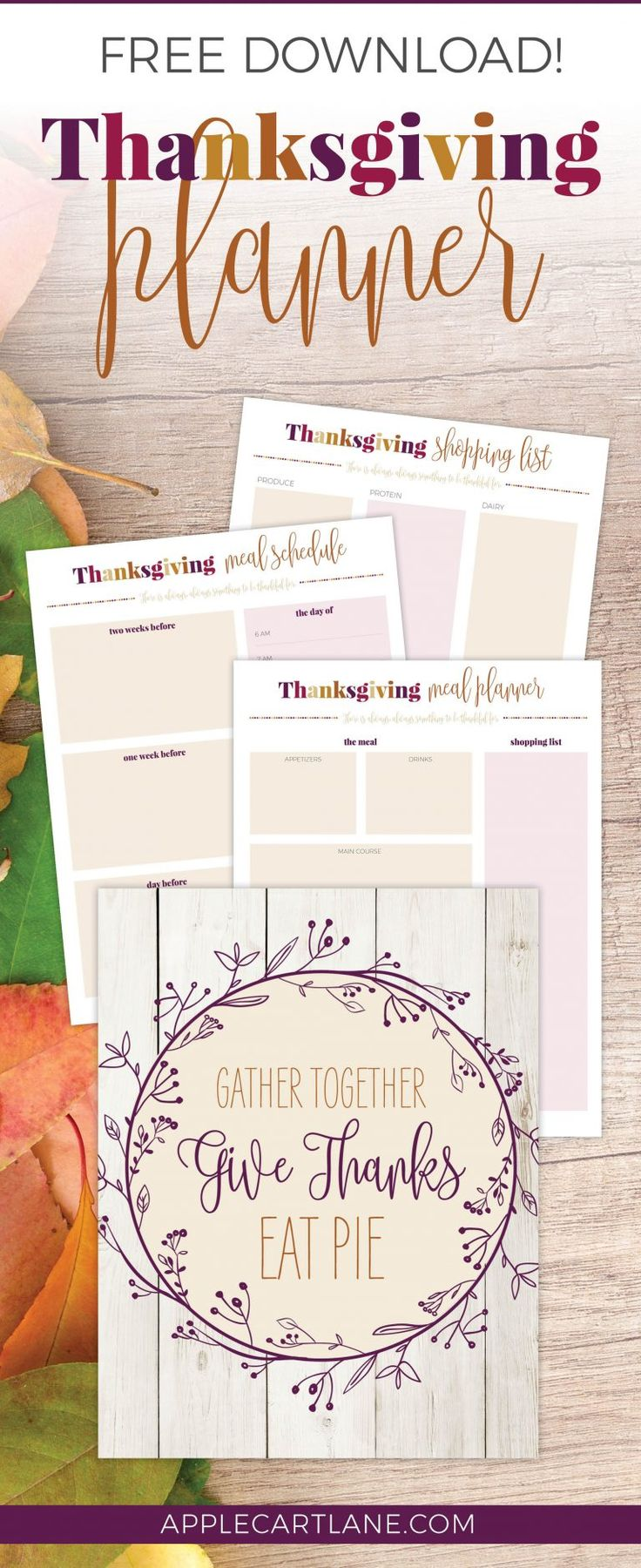 This is exactly what I needed! Functional (and fun!) Thanksgiving Planner printable. Includes a thanksgiving meal planner, thanksgiving shopping list, thanksgiving place cards and more! Now to just nail down all a thanksgiving recipe or two:)