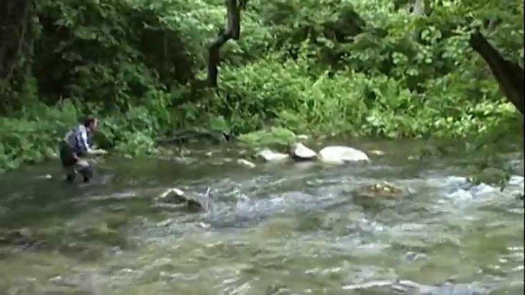 Pesca a mosca secca pratica