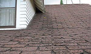 Roof repair costs and tips - Kudzu.com