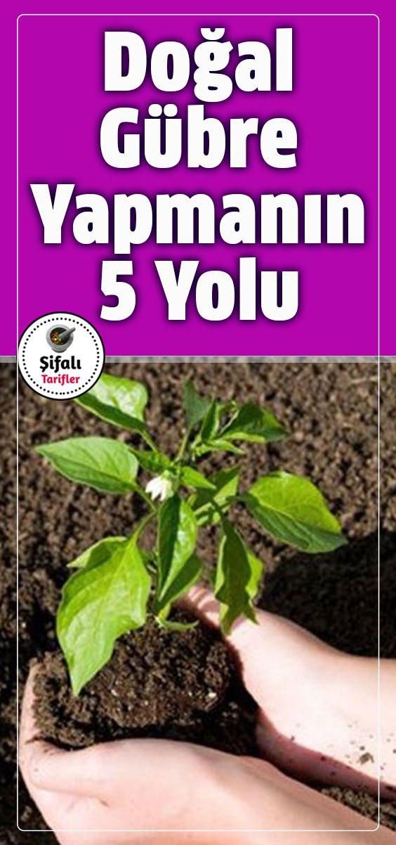 DOĞAL GÜBRE YAPMANIN 5 YOLU.. Bahar mevsiminde bahçenizdeki bitkilerinizi yen…