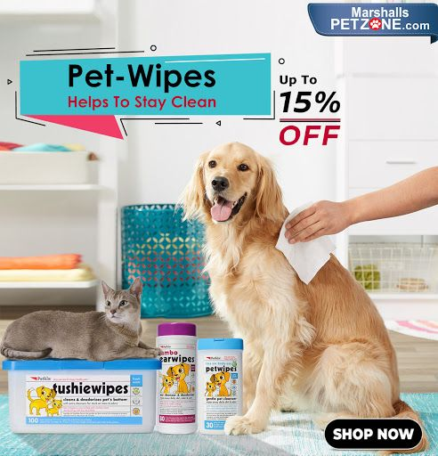 This Is The Convenient Solution For Keeping Your Pet Fresh And