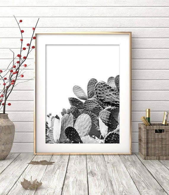 Cactus Print Black and White Photography Modern Minimalist