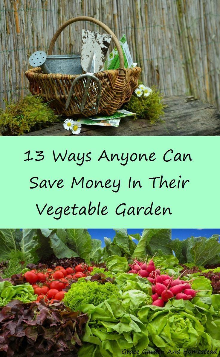 280 best growing vegetables images on pinterest vegetable garden