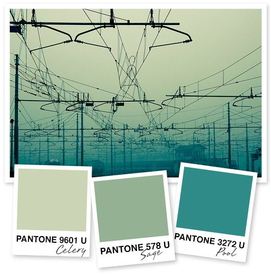 Monochromatic Palette 8 best restaurant color palette images on pinterest | home, paint