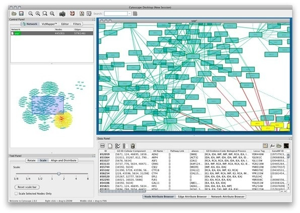 Cytoscape: An Open Source Platform for Complex Network Analysis and Visualization