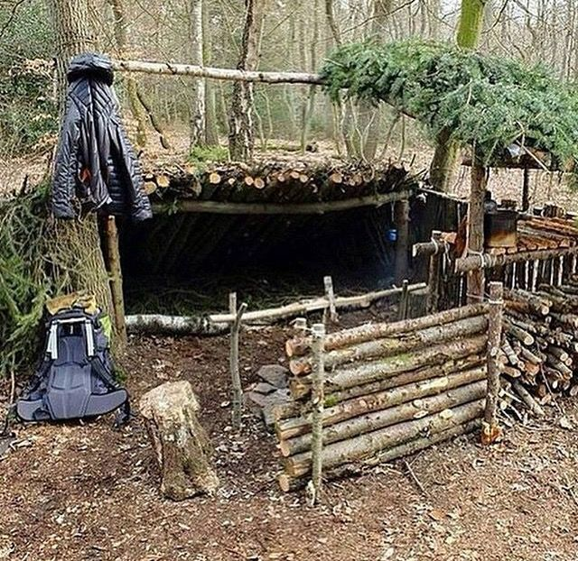 shelter in the woods