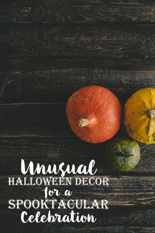 ❝ Unusual Halloween Decor for a Spooktacular Celebration ❞ via @eBay #eBayGuides2016 » http://www.ebay.com/gds/Unusual-Halloween-Decor-for-a-Spooktacular-Celebration-/10000000213431189/g.html