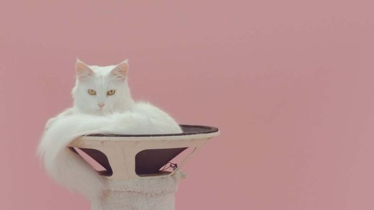 """Dutch artists Lernert & Sander have created a high concept, minimalistic music video for the song """"Manon"""" by the Amsterdam-based electronic hip-hop band De Jeugd Van Tegenwoordig (&…"""